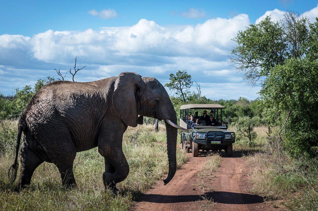 Activities SWZ Safaris 6 (JR)